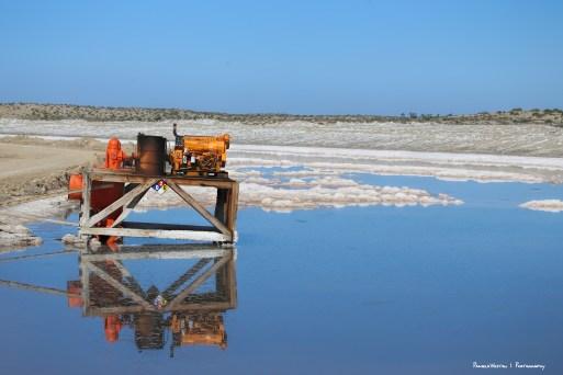 Crossing the salt flats to get to Ojo de LIebre