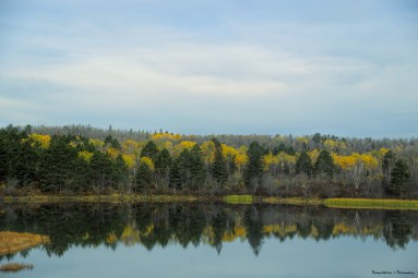 A still lake from the Trans Canada