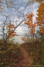 Path to the beach and Lake Superior