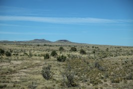 Cinder cone in the area