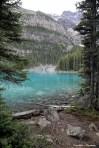 That colour! Lakeshore Trail