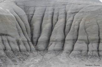 Elephant feet?;)