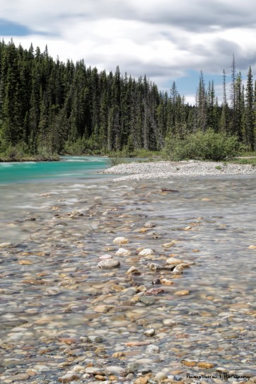 Lake Louise Creek flows into the Bow River behind the campground.