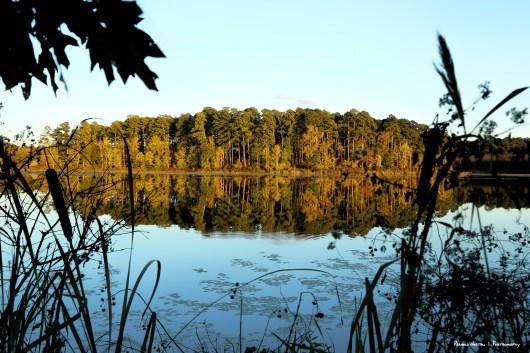 Sunset and reflections on Caney Lake, Louisiana