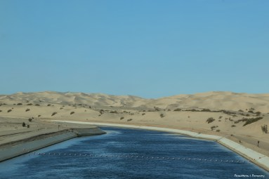 The odd mix of water and desert