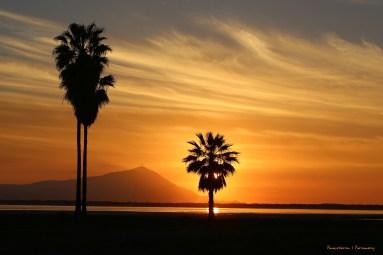 Goodnight Ensenada