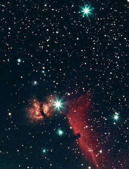 The bright star in the centre is Alnitak. The left-hand star in Orion's Belt. Just to the left is the Burning Bush nebula(NGC 2024). Below is the Horsehead nebula (Barnard 33) outlined by the glow of Hydrogen alpha light.