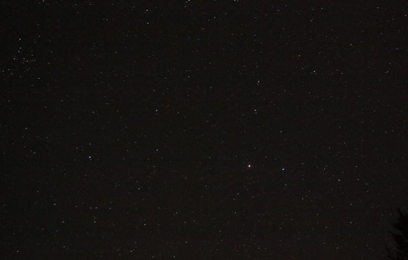 C_3679.jpg (800x533 pixels)