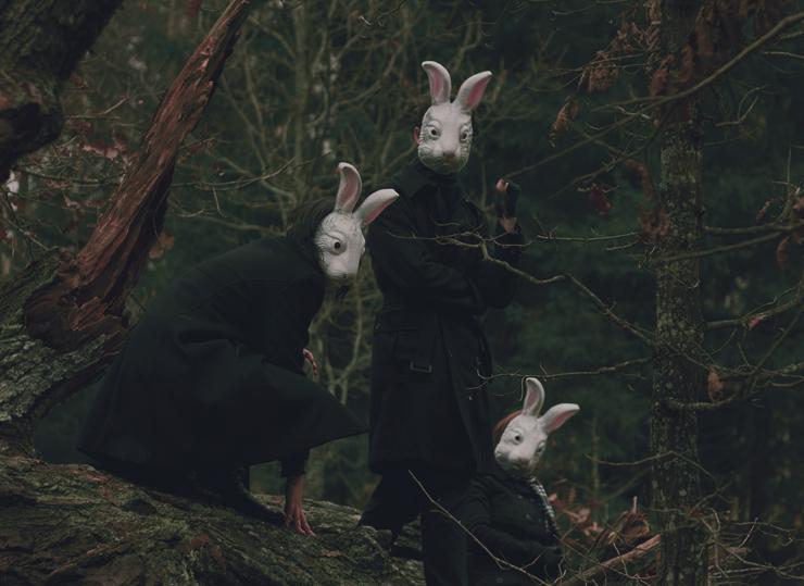 rabbits perhydrol