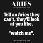 aries zodiac