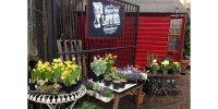 battersea_flower_station_2