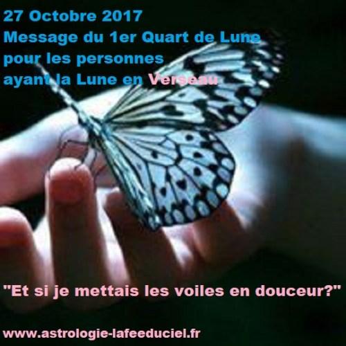 Message du 1er Quart de Lune du 27 Octobre 2017 pour les personnes ayant la Lune en Verseau