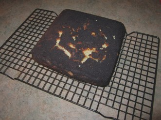great-burnt-cake-burnt-cake-under-the-mango-tree