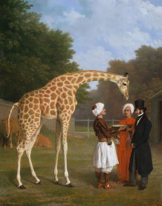The Nubian Giraffe by Jacques Laurent Agasse