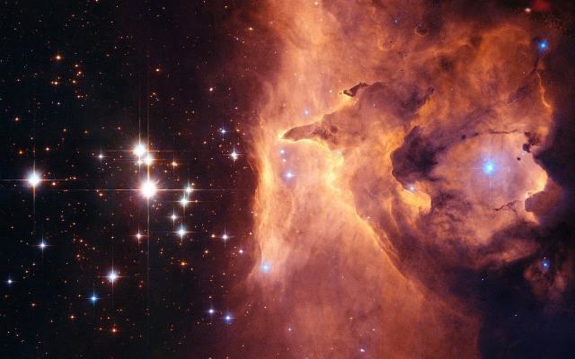 télescope aigrettes