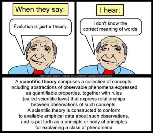 teoria