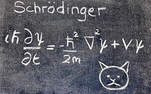 schrodinger-cat-equation