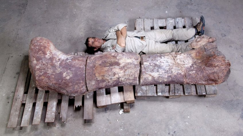 Jose Maria Farfaglia/Museo Paleontologico Egidio Feruglio