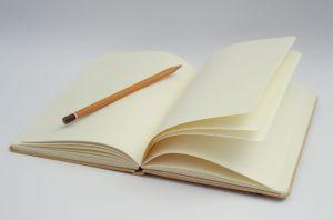 bullet journal voordelen tracking