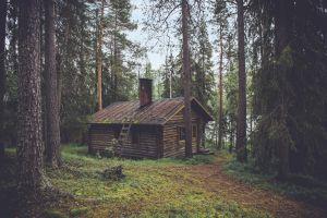 4de huis, schorpioen, weegschaal, boogschutter, waterman, steenbok, vissen, wortels, emotionele zekerheid, geborgenheid, afsluiten, huis, woonomgeving, familie, geschiedenis