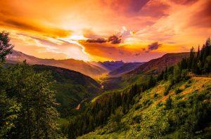De natuur als inspiratiebron