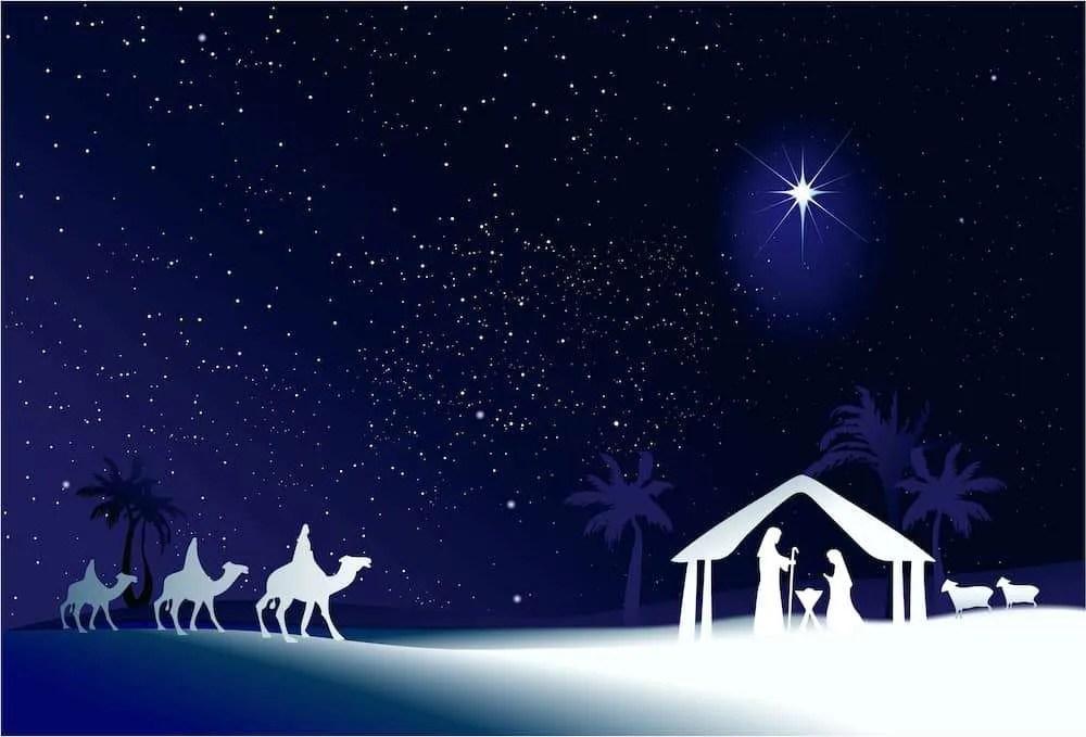 Božićna zvijezda; czibo © 123RF.com