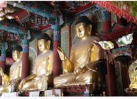 horoscope reincarnation past life karma  kundli