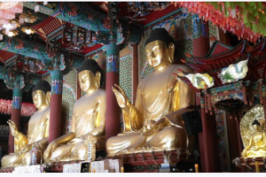 reincarnation past life karma horoscope kundli predictions