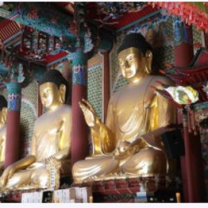 horoscope reincarnation hitler adolf karma past life kundli predictions