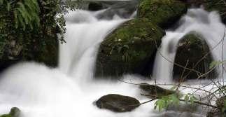 Agua en Taranes