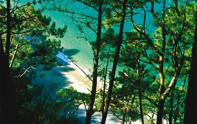 playa de oleiros en cudillero