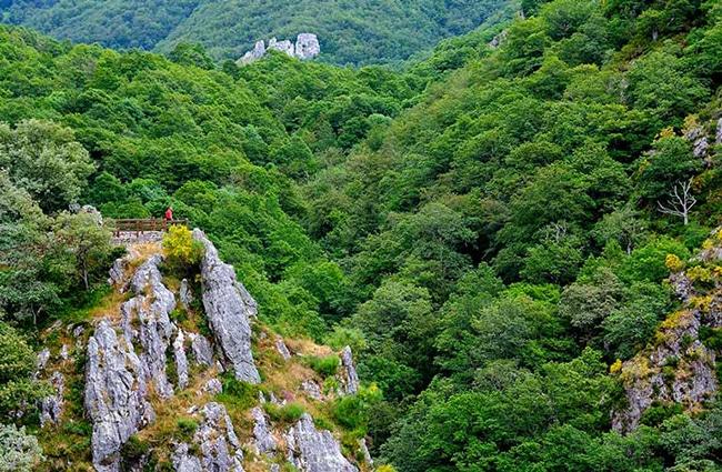 senda del arcediano en asturias belleza natural