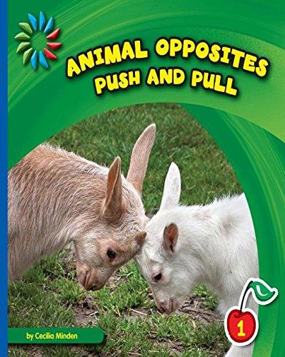 animaloppositespushandpull