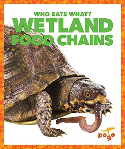 wetlandfoodchains