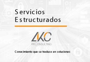 Servicios Estructurados, AK Consulting