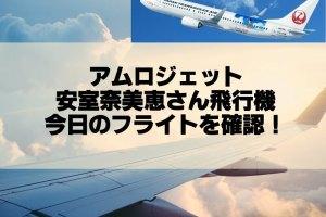 AMUROJET(安室奈美恵デザイン飛行機)のフライト時間を確認