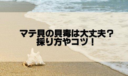 貝毒はマテ貝は大丈夫?潮干狩りでの取り方やコツも動画でチェック