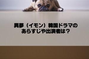 異夢(イモン)韓国ドラマのあらすじや出演者は?日本語字幕で観れる?