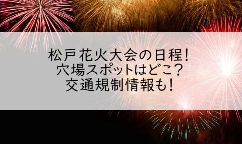 松戸花火大会イン2018の日程!穴場スポットはどこ?交通規制情報も!