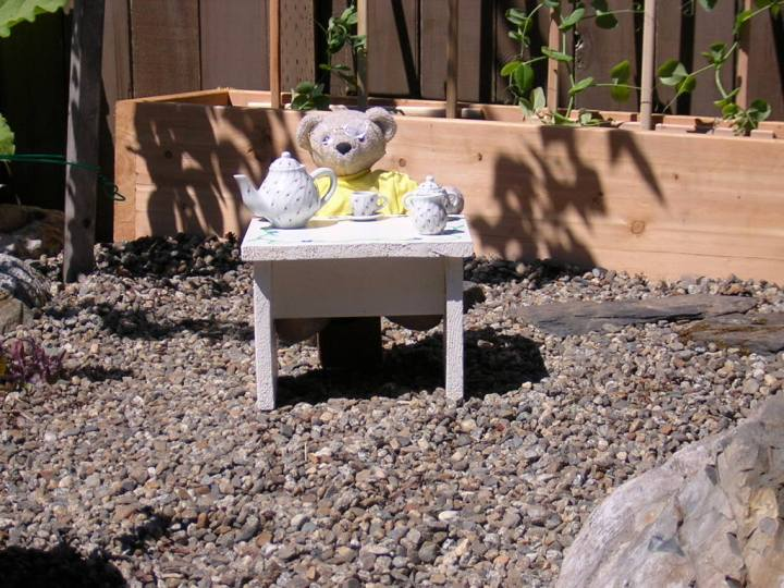 Teddy with tea in the garden