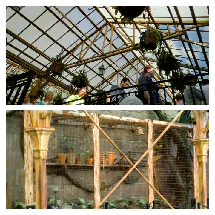 Hogwarts Castle Greenhouse, Universal Orlando