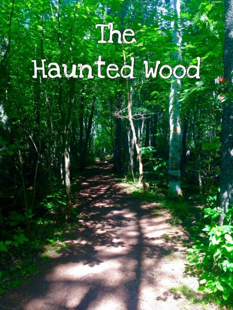 Haunted Wood