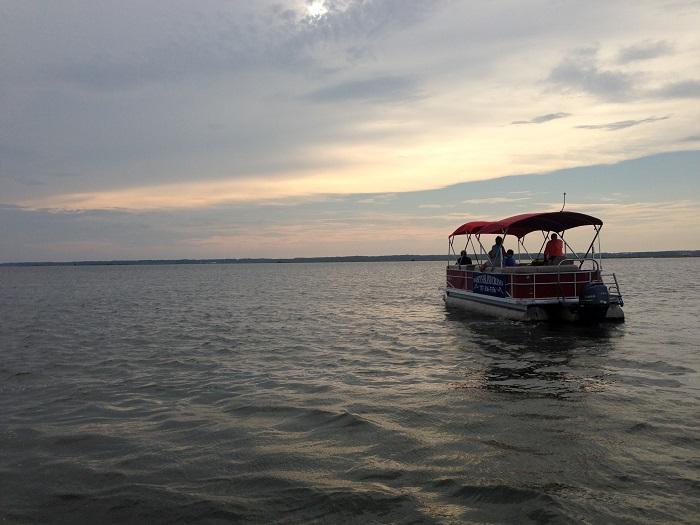 Daisy's Island Boat Cruises