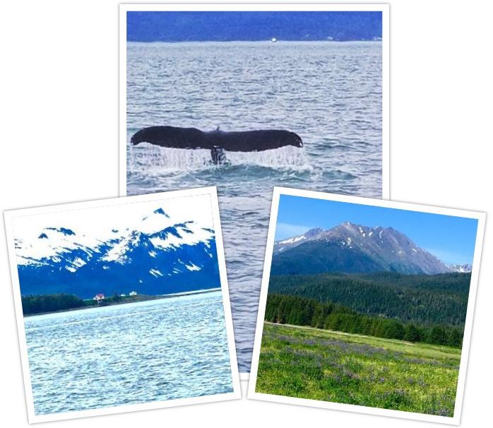 Alaska Wilderness Collage