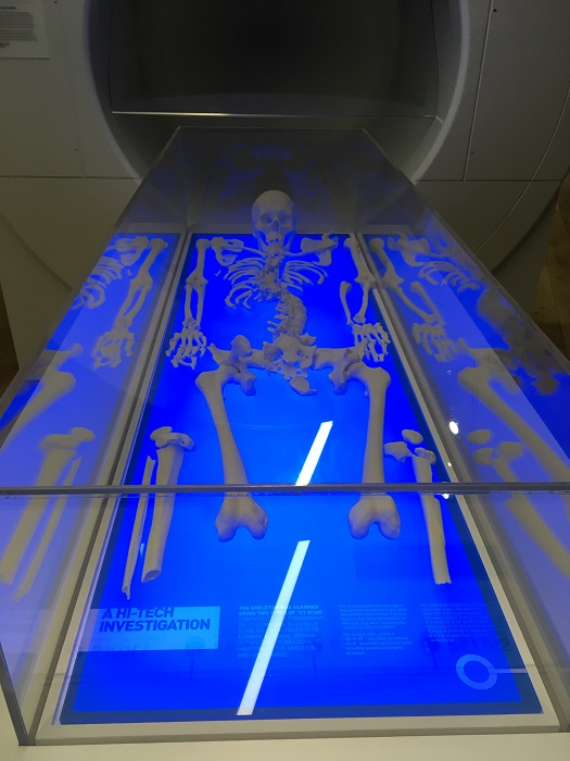 Richard III 3D printed copy of skeleton