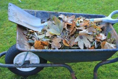 Compost brown matter