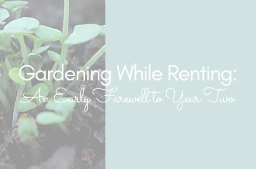 Gardening While Renting