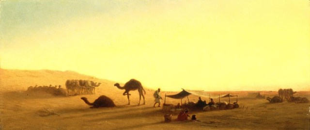 الصحراء العربية