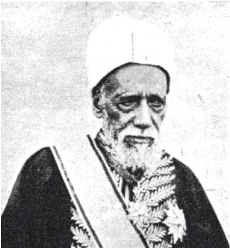 الشيخ محمد أبوالفضل الجيزاوى