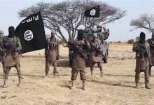 الإرهاب في إفريقيا